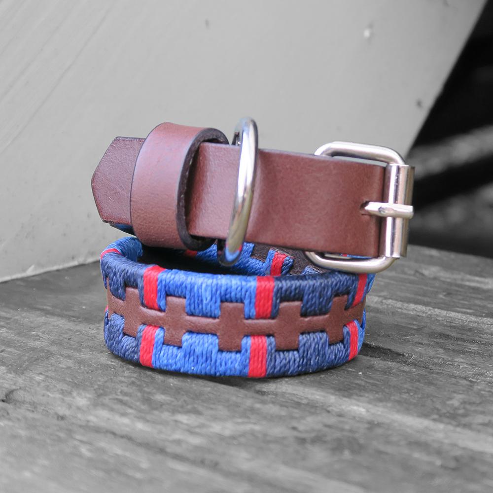 Windsor TT Polo Dog Collar