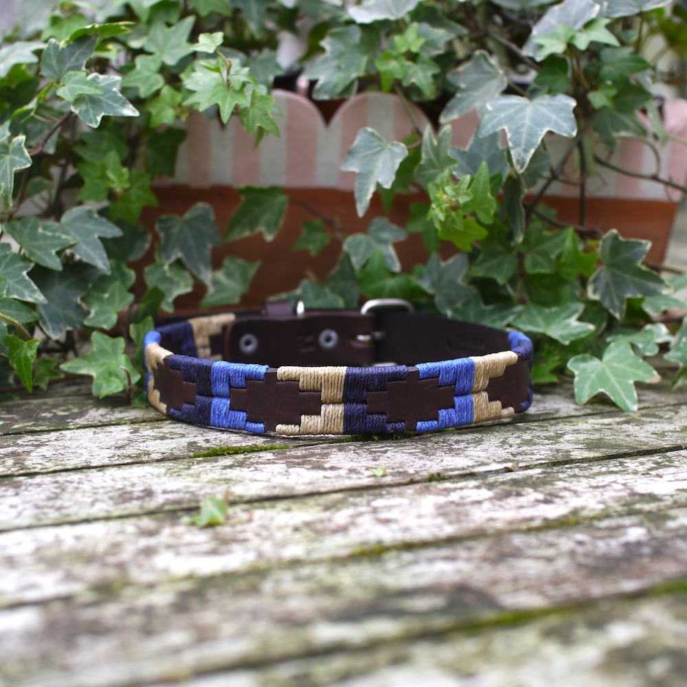 Alexander Pampi Dog Collar