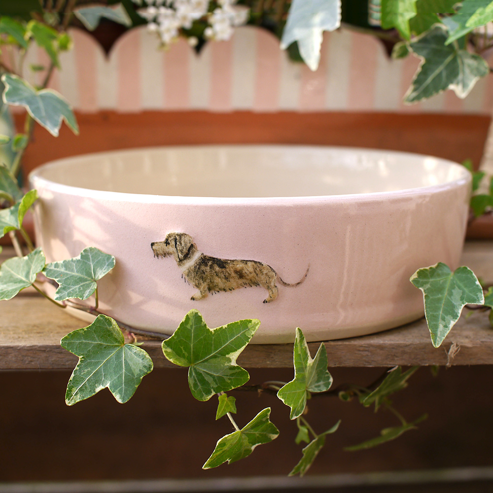 Jane Hogben Pottery Dog Bowl in pink featuring a gorgeous wire-haired daschund.