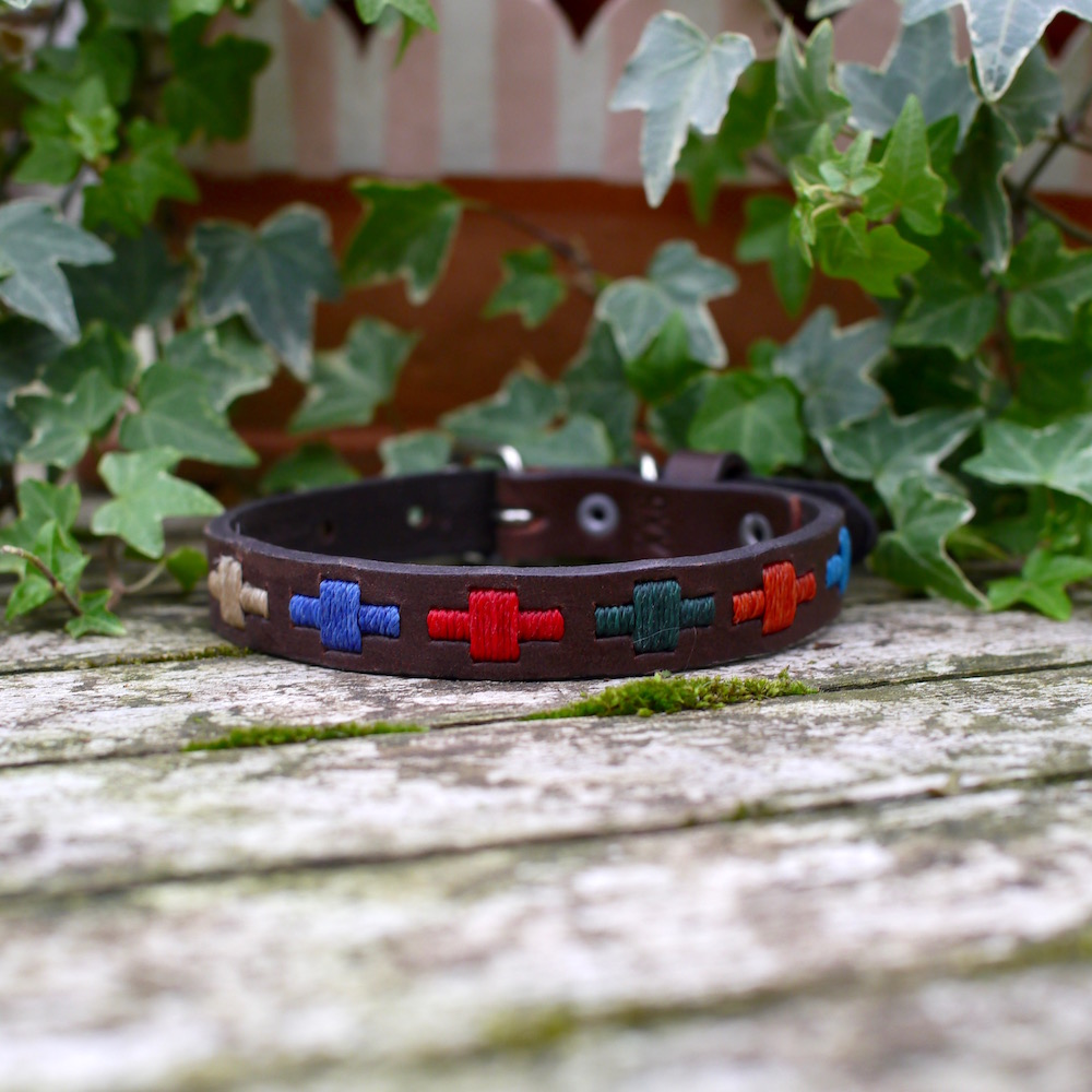 Arco Iris Mini XXS Dog Collar