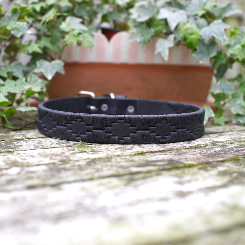 Knightsbridge Polo Dog Collar