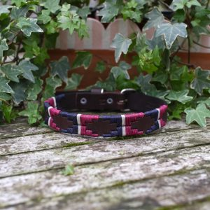 Swanbourne Pampi Dog Collar