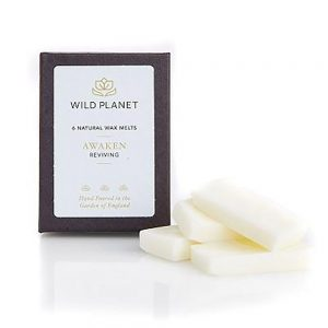 Wild Planet Wax Melts Awaken