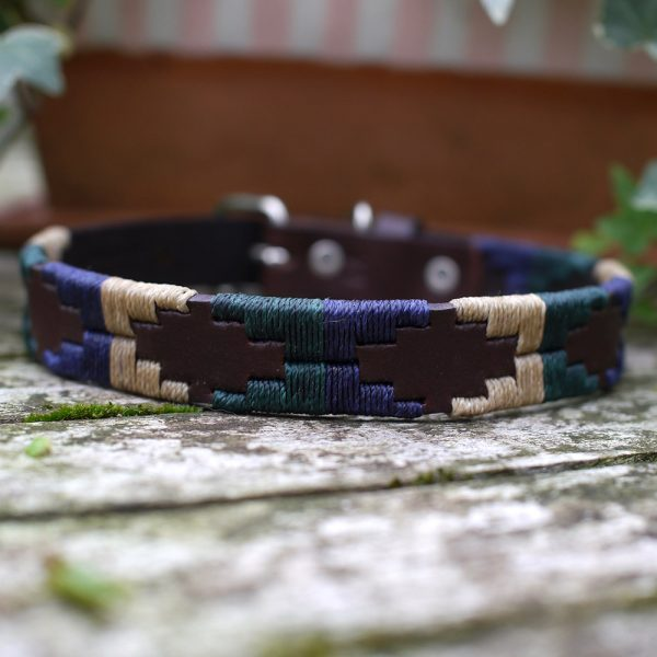 A smart collar in racing green, cream and navy.