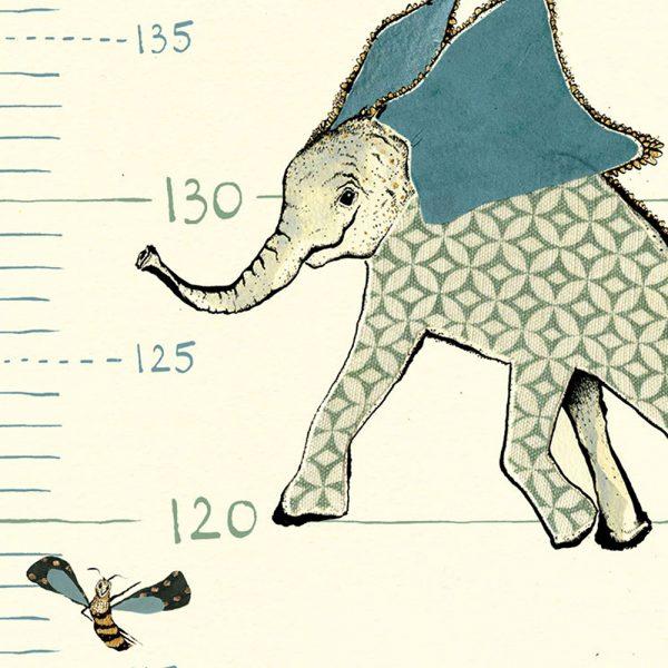Anna Wright Height Chart