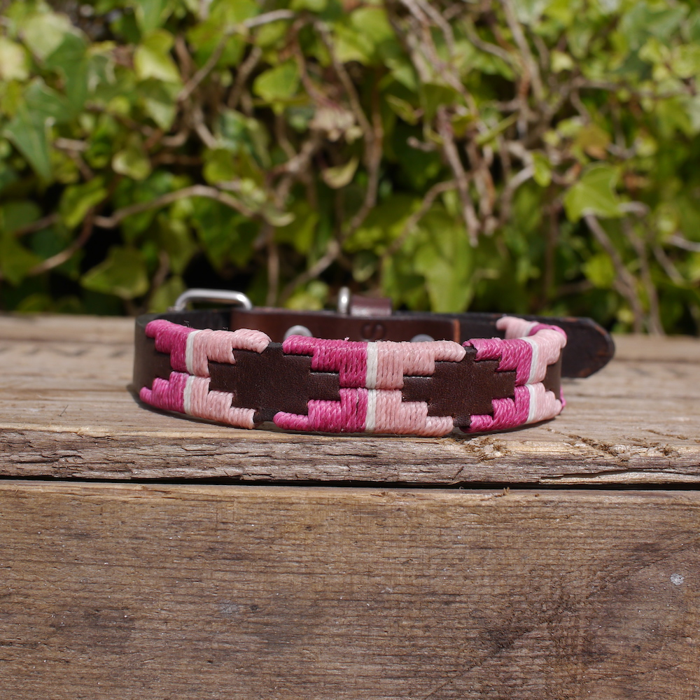 Ginny Polo Dog Collar in a combination of two pinks