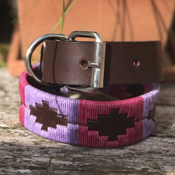 Chatham Polo Dog Collar
