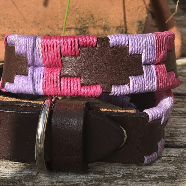 Chatham Pampi Polo Dog Collar