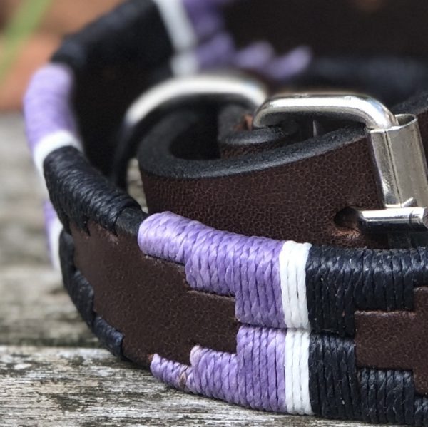 Scrumpy Polo Dog Collar