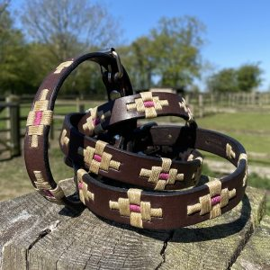 Twesel Polo Dog Collar and Lead