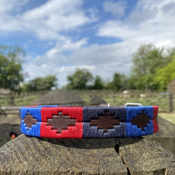 St James Argentinian Polo Dog Collar in two blues and a red
