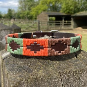 Woodstock Polo Dog Collar