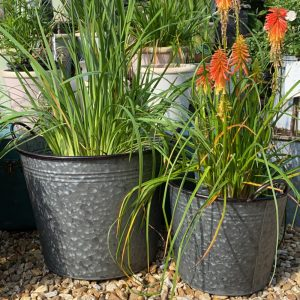 Set of 5 Galvanised Buckets, 2 biggest