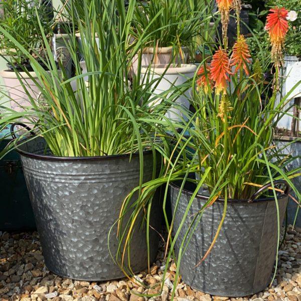 Set of 5 Galvanised Buckets, 2 biggest