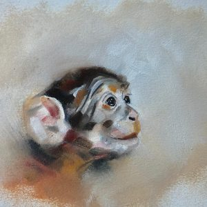 Macaque by Julie Brunn