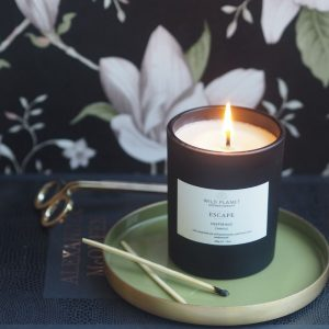 Wild Planet Escape Candle - Inspiring