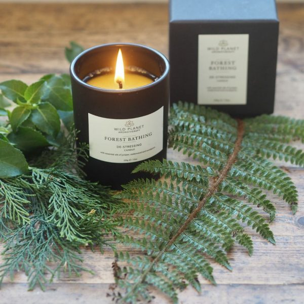 Wild Planet Forest Bathing Candle - De-Stressing