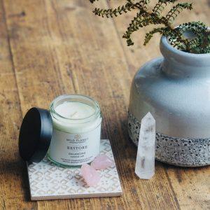 Wild Planet Restore Candle Jar - Balancing